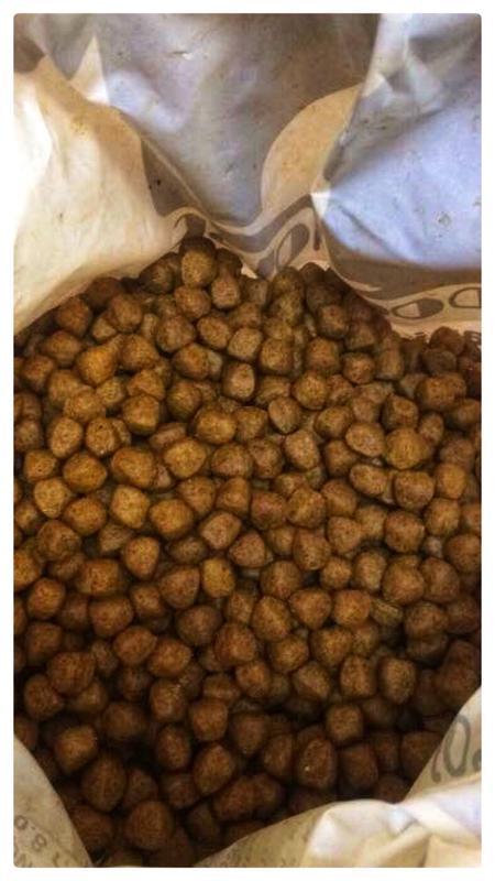 Линия по производству сухого корма для собак, котов и рыб - Фото 3