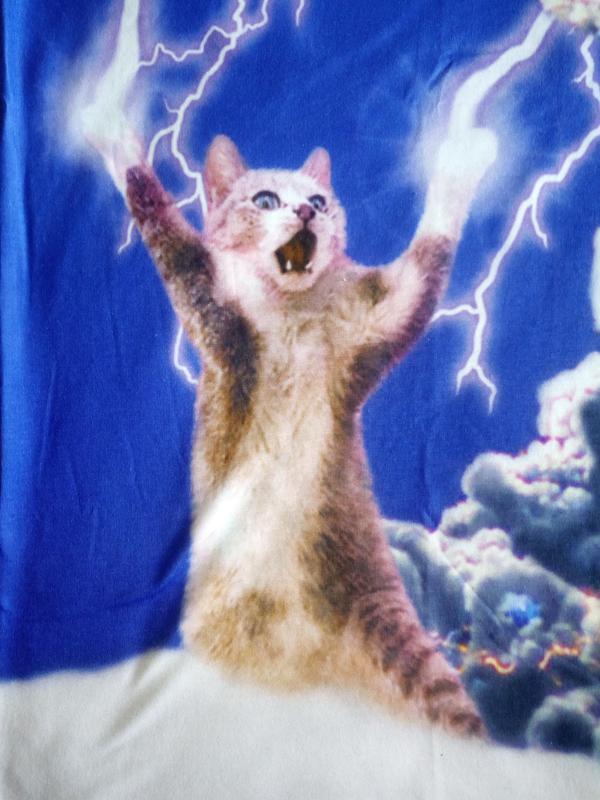 Майка туника с 3d рисунком кот котенок, модная и классная 44-48р