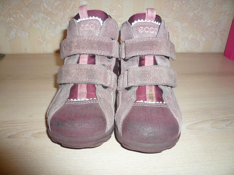 Деми ботинки полусапожки экко ecco 25 р стелька 16 gore-tex - Фото 4