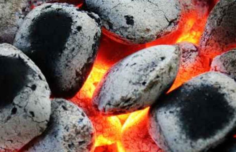 Древесный брикет (европодушка),уголь для мангала,гриля,барбекю По