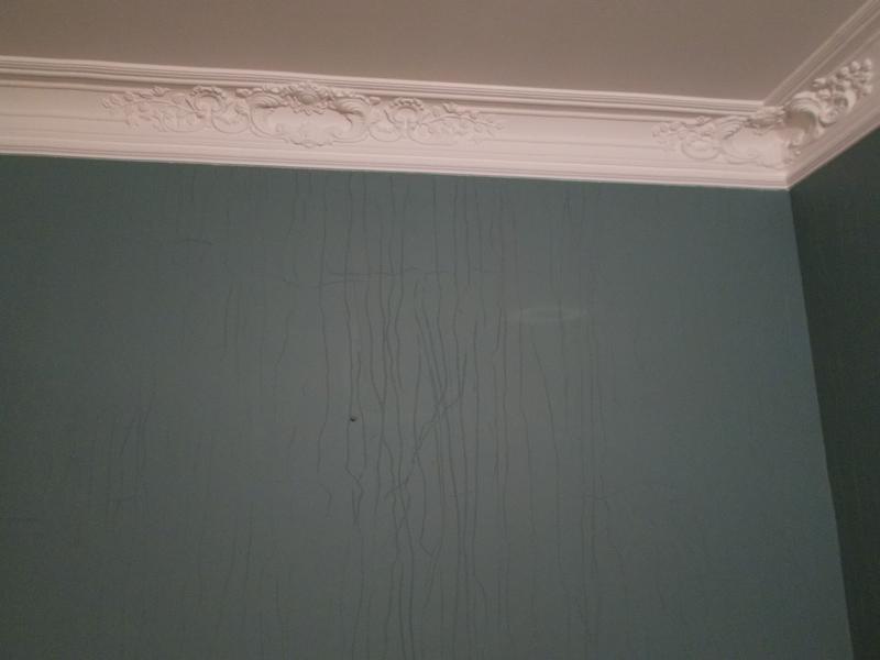 Покраска стен, потолков, рогожки - Фото 5