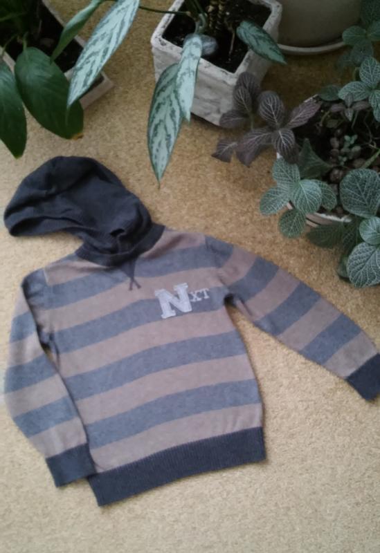 Полосатый свитер с капюшоном