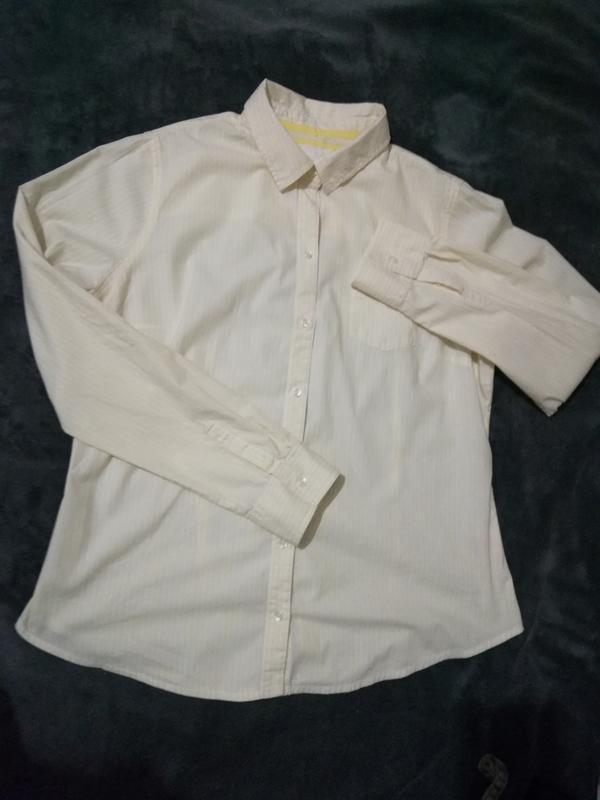 255 рубашка в полоску приталенная