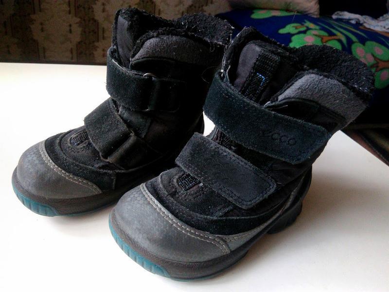 Ботинки ,сапоги зимние ecco biom