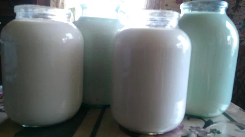 Продам козье молоко, сыр, творог