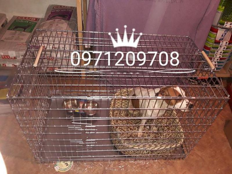 """Клетка для Собак (котов) """"Волк 2""""( вольер, лори)"""