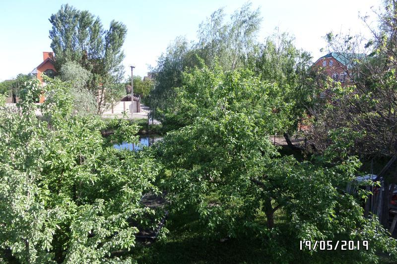 Доглянута земельна ділянка з озерцем в с.Романків - Фото 15