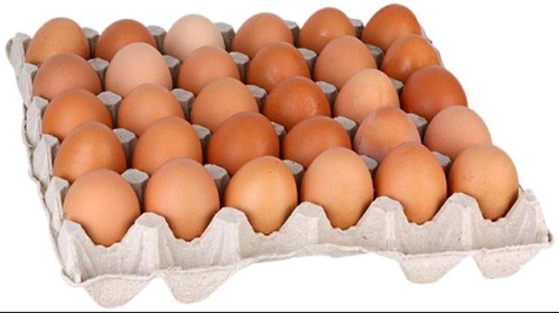 Яйця Курячі ОПТ