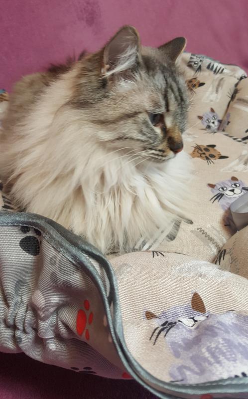 Лежанка для кота собаки лежак Kuzya Production Котики и лапки - Фото 6