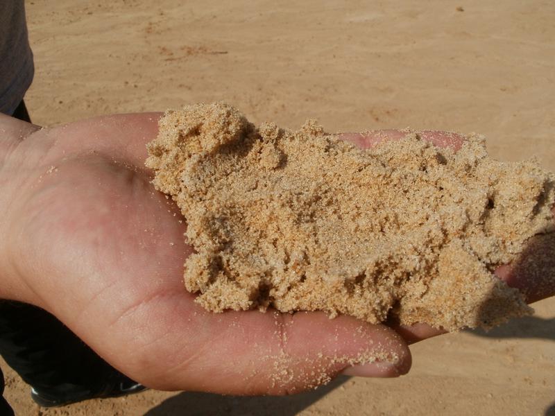 Песок с доставкой по Николаевской области с НДС - Фото 2