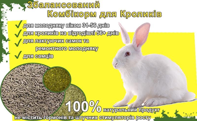 Повноцінно збалансований Комбікорм для Кроликів оптом та в роз...