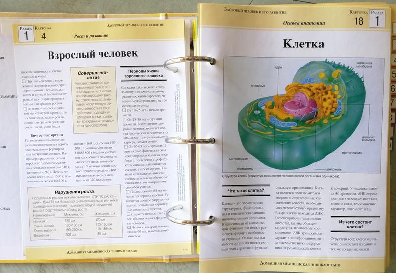 Домашняя медицинская энциклопедия - Фото 7