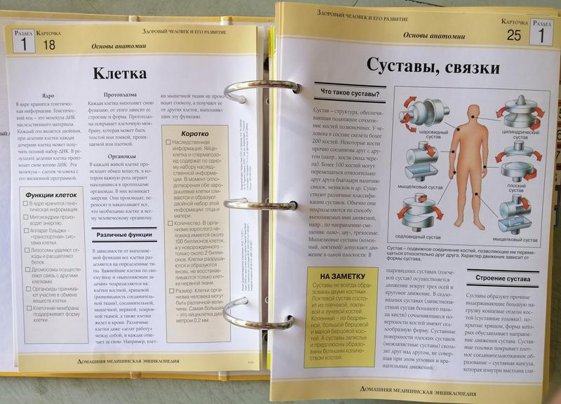 Домашняя медицинская энциклопедия - Фото 8
