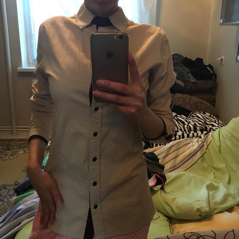 Рубашка/блузка классическая офисная школьная деловая хлопок/ко...
