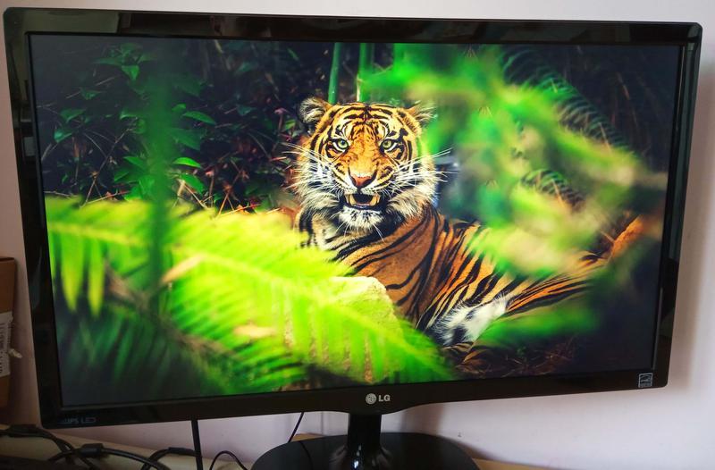 """Монитор 23"""" LG IPS 23MP48Q HDMI матрица в идеальном состоянии - Фото 3"""