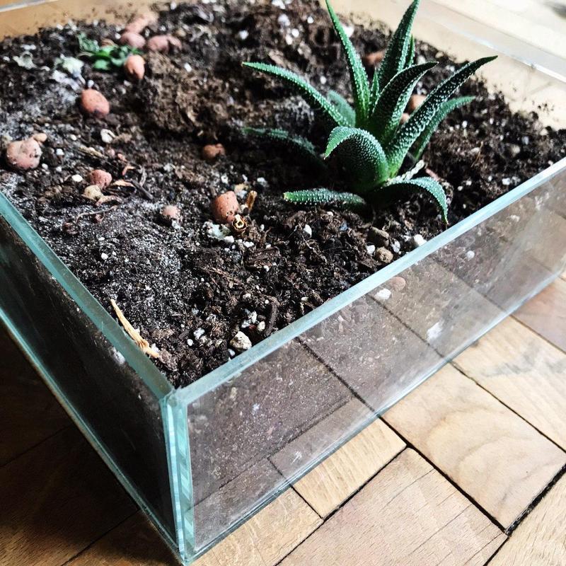 Вазоны из стекла, стеклянные вазы, декор из стекла, стекло - Фото 5