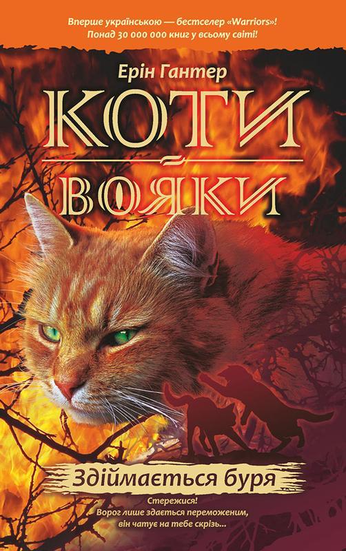 Книга Коти-Вояки. Книга 4. Здіймається буря
