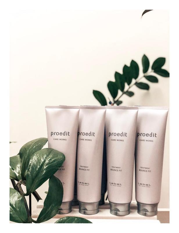 Маска для поврежденных волос Lebel Proedit Bounce Fit 250 ml