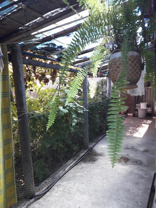 Пол дома ул.Артилеристов 53 кв.м. 2 ком.кух.прихожка,подвал, газ,