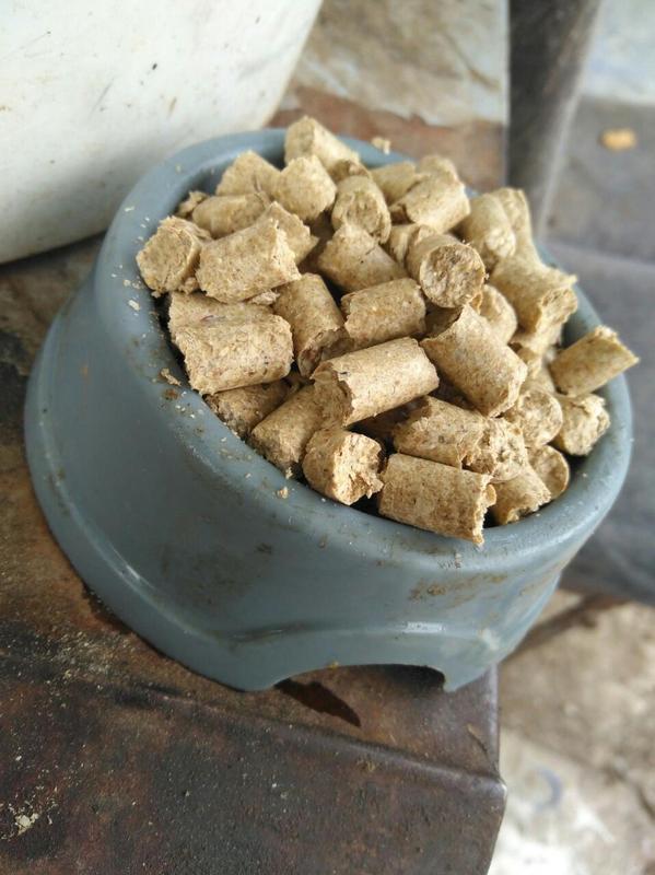 Сухой натуральный корм для собак