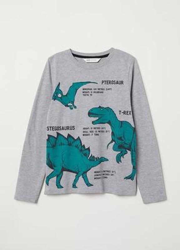 Реглан, лонгслив h&m от 6- 8 лет динозавр, дино. оригинал.
