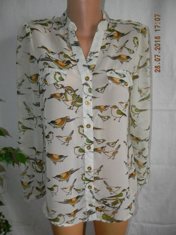 Шифоновая блуза  принтом птички