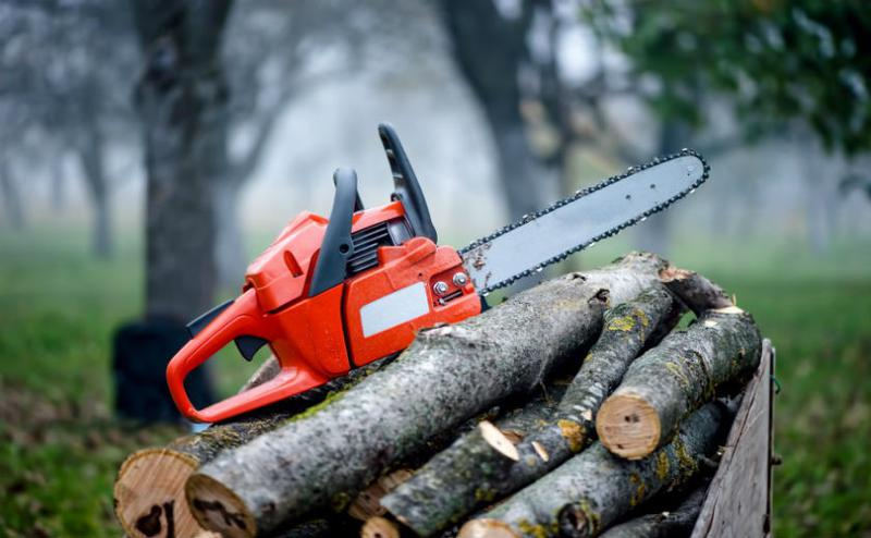 Распиловка дров - Фото 2