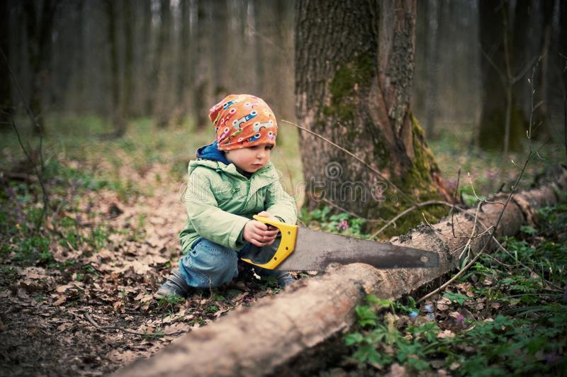 Распиловка дров - Фото 3