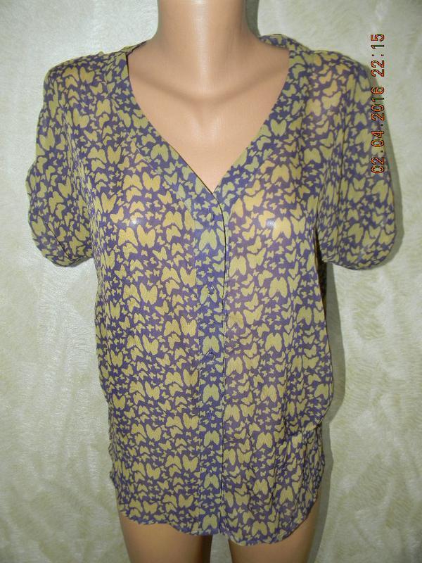 Шифоновая блуза с пинтом бабочки