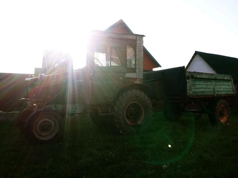 Трактор t-25