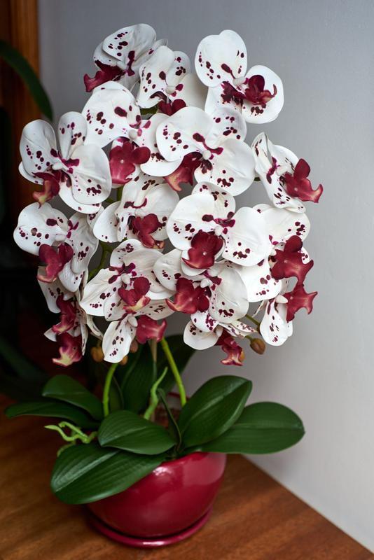 Орхідея штучна / искусственная орхидея