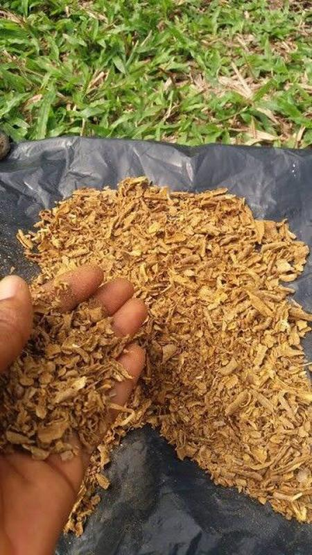 Ибога: кора корня ибоги/ капсулы с ибогой / порошок ибогаин (1гр) - Фото 3