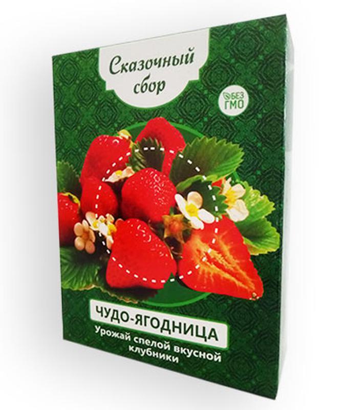 Чудо-ягодница Сказочный сбор – набор для выращивания клубники