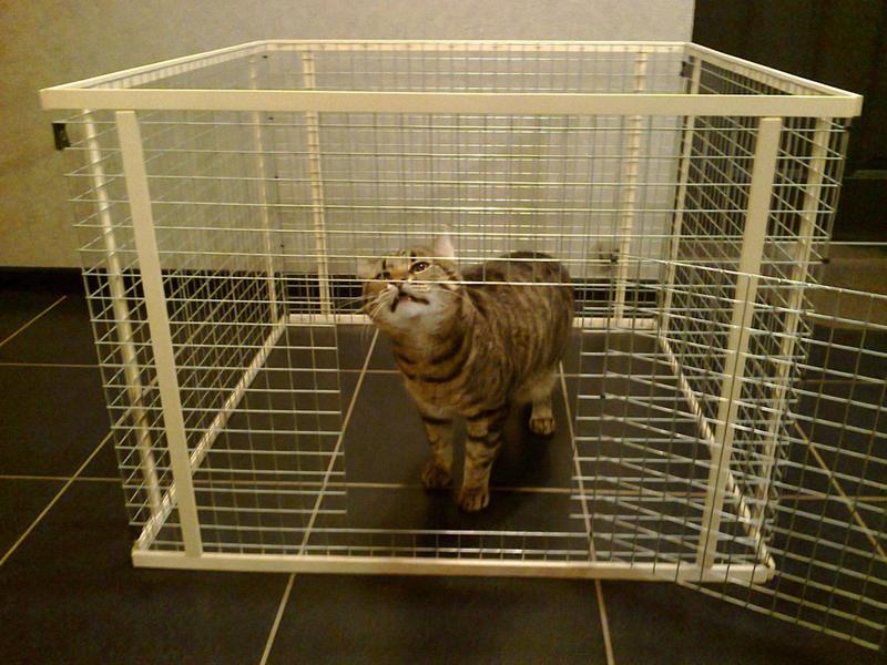 Вольер манеж клетка для маленьких собак щенков котят кроликов и т - Фото 4