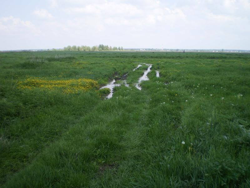 Земельный участок 12 соток в с. Волошиновка - Фото 2