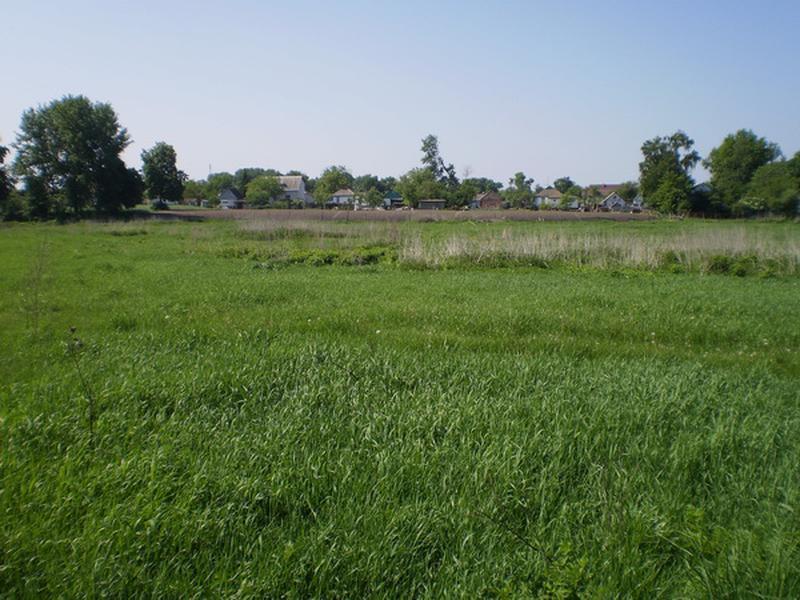 Земельный участок 12 соток в с. Волошиновка - Фото 5