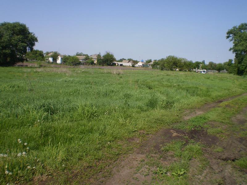 Земельный участок 12 соток в с. Волошиновка - Фото 3