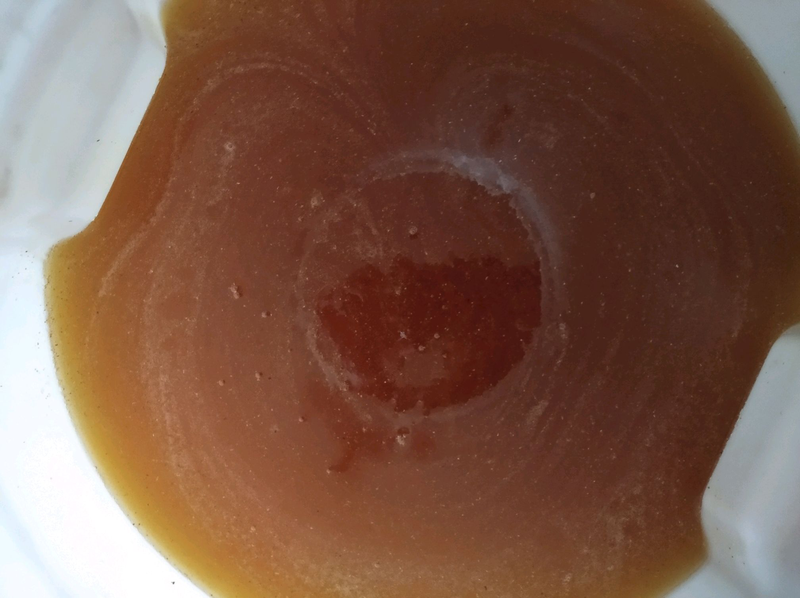 Мед з золотарника - Фото 2