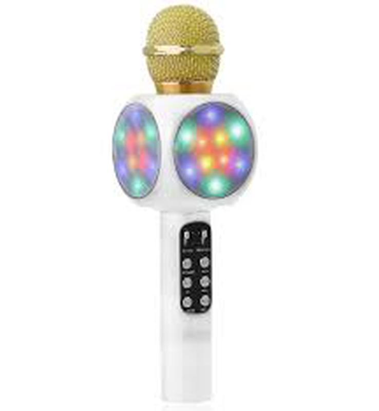 Оригинальный караоке микрофон WSTER WS-1816 - Фото 3