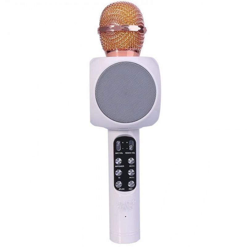 Оригинальный караоке микрофон WSTER WS-1816 - Фото 6