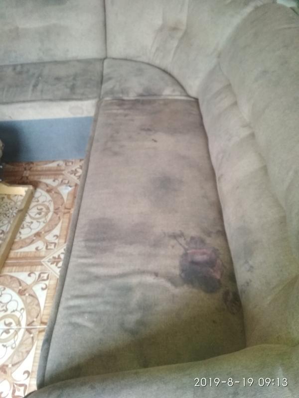 Стирка ковров, химчистка мягкой мебели - Фото 6