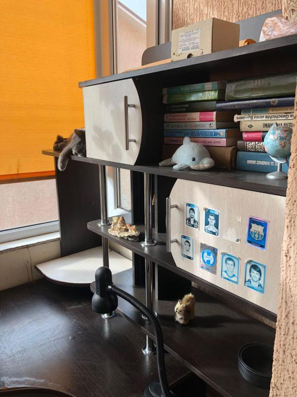 Офисный стол - Фото 3