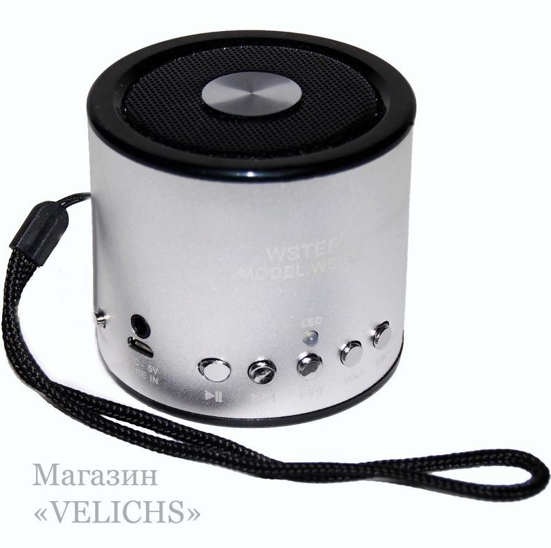 Портативная колонка WS-A8 MP3 FM