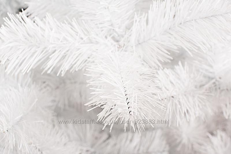 Елка Лесная Белая - Фото 4