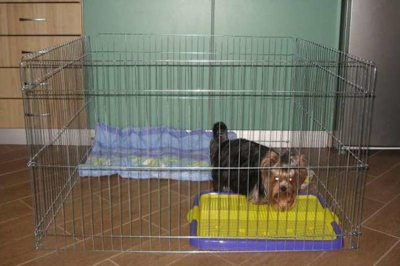 Ясли вольер манеж 100х100х60h клетка для собак кошек щенков котят - Фото 2
