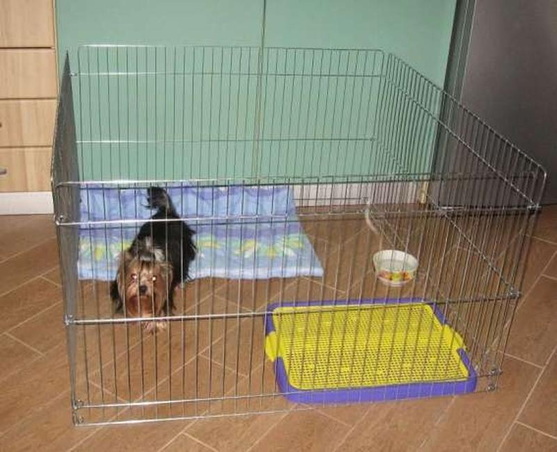 Ясли вольер манеж 100х100х60h клетка для собак кошек щенков котят