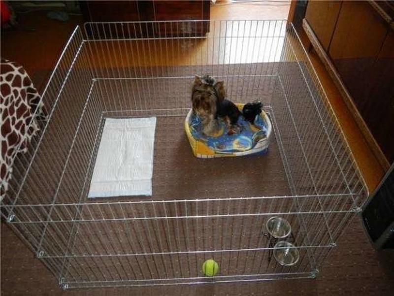 Ясли вольер манеж 100х100х60h клетка для собак кошек щенков котят - Фото 11