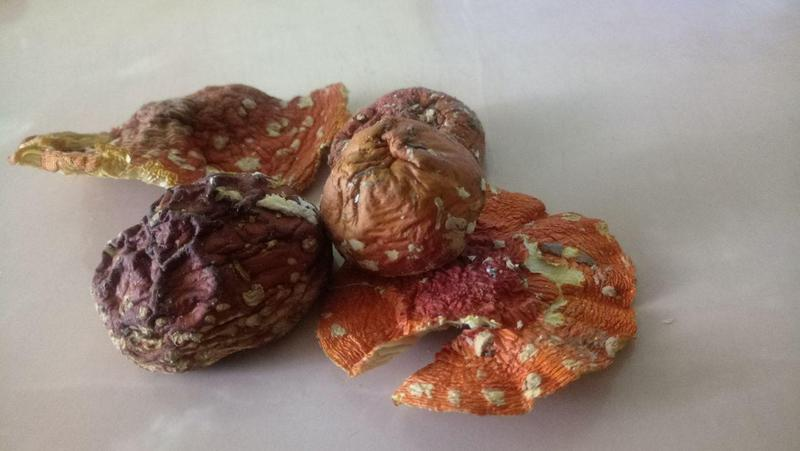 Микродозинг красный мухомор 0,4г(капсулы)