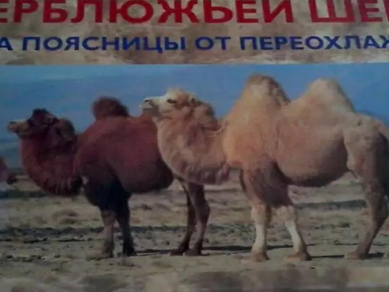 Пояс ручной работы из верблюжьей и овечьей шерсти