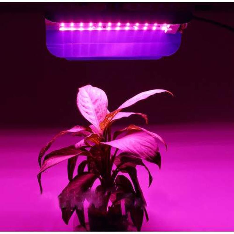 Світлодіодні фіторожектори для підсвічування рослин